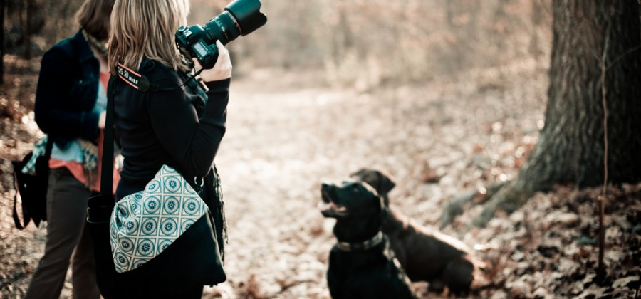 Three photographers, four dogs!