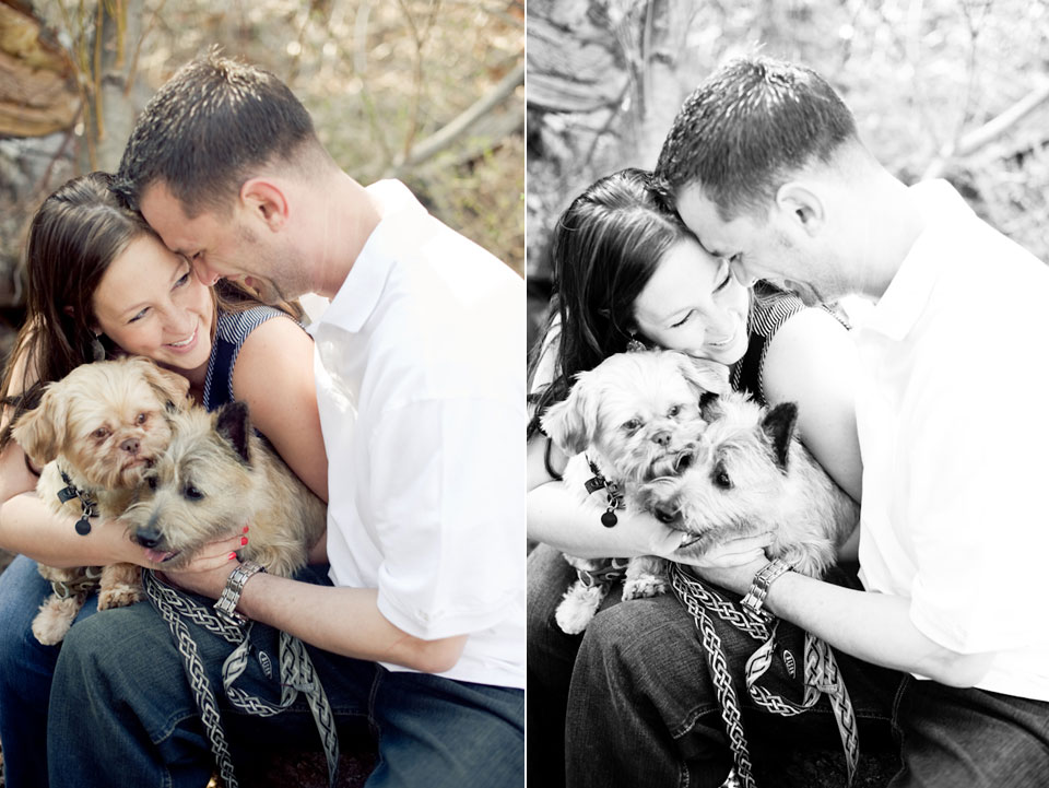s & j with their dogs