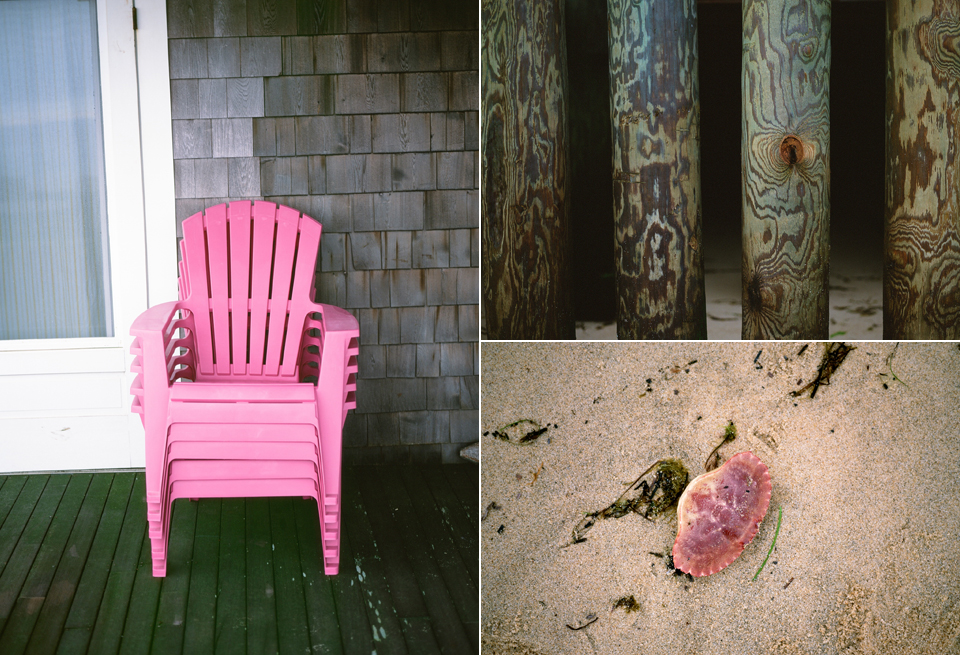 seashells and beach chairs
