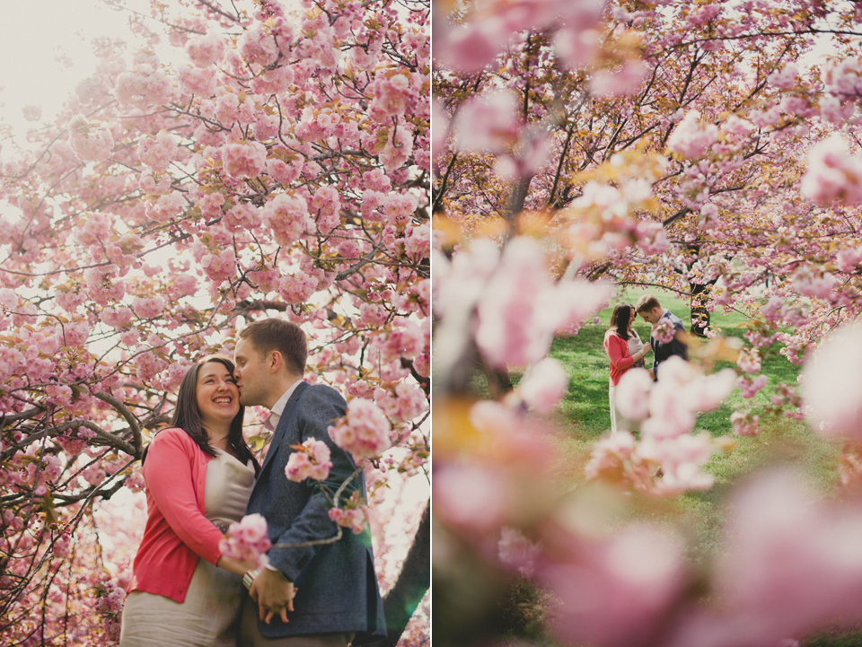 Washington DC cherry blossom engagement