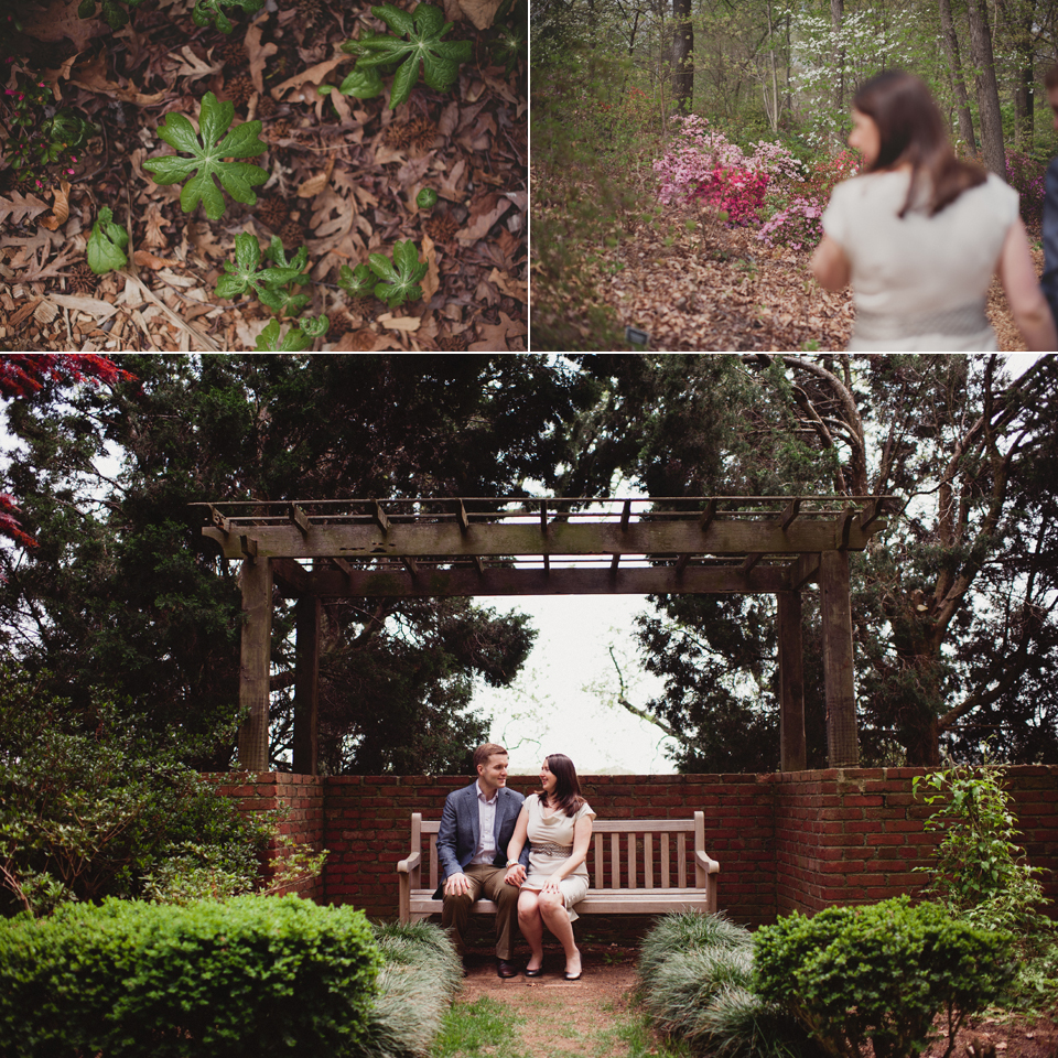 Washington DC arboretum engagement