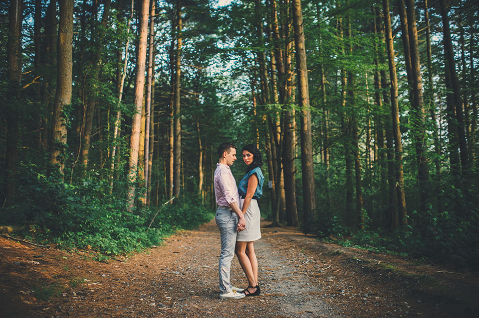 Fells reservation engagement pictures
