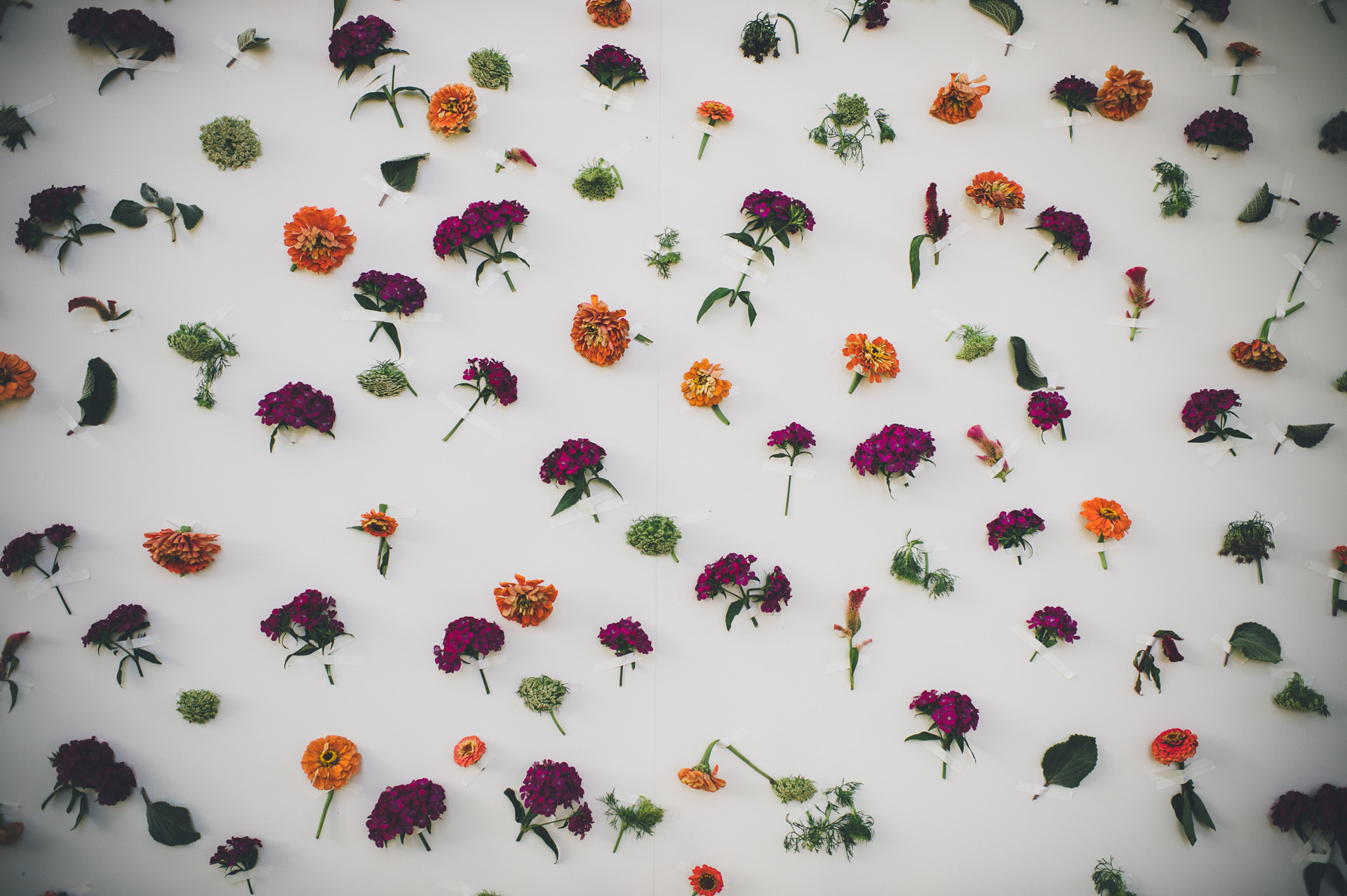 live flowers photo booth backdrop
