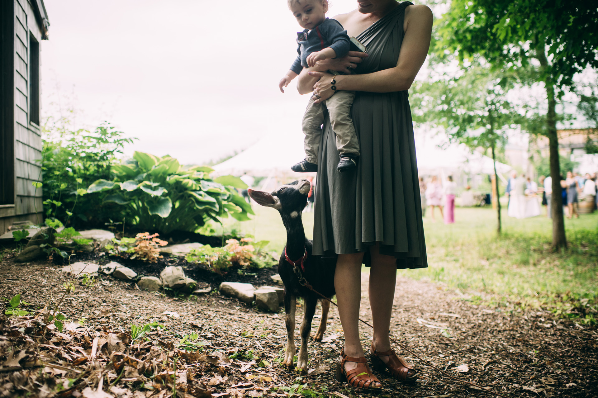 broadturn-farm-wedding-52